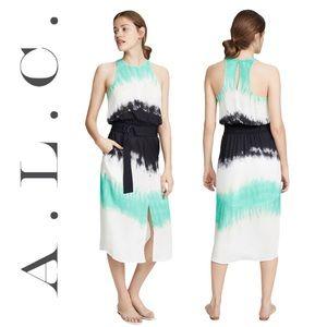 A.L.C. Tallulah Tie Dye Silk Women's Dress